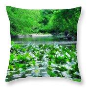 Lily Pads Along Unami Creek Throw Pillow