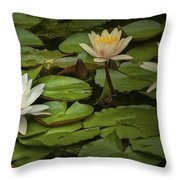 Lily Pads And Blossoms. No186 Throw Pillow