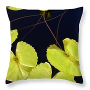 Lily Pads And Lotus Blossom Throw Pillow