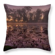 Lily Pads In The Fog Throw Pillow