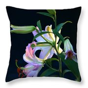 Lily Pod To Flower Throw Pillow