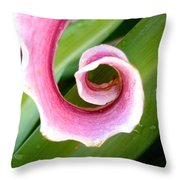 Lily Spiral Throw Pillow