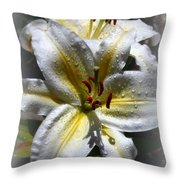Lily Sweet Lily Throw Pillow