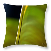 Lime Abstract Throw Pillow