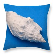 Lime Made From A Seashell Throw Pillow by Ted Kinsman