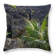 Limestone Canyon Throw Pillow