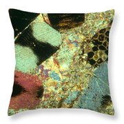 Limestone With Fossils Throw Pillow