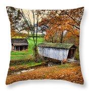 Lincoln's Homestead Throw Pillow