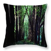 Linden Trees Line Leo Tolstoys Favorite Throw Pillow