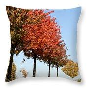 Line Of Autumn Trees Throw Pillow