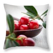 Lingonberries Throw Pillow