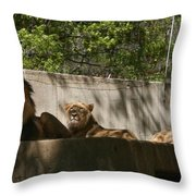 Lion Around Throw Pillow