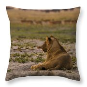 Lion Lazy Throw Pillow