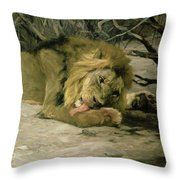 Lion Reclining In A Landscape Throw Pillow