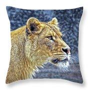 Lion Stare Throw Pillow