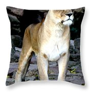 Lioness At Attention Throw Pillow