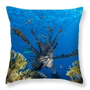 Lionfish Foraging Amongst Corals Throw Pillow