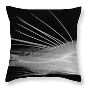 Lionfish X-ray Throw Pillow