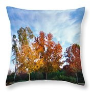 Liquid Amber Trees Throw Pillow