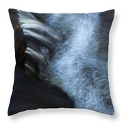 Liquid Motion Throw Pillow