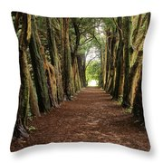 Lismore, County Waterford, Ireland Throw Pillow