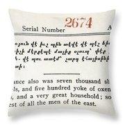 Literacy Test C1917 Throw Pillow