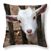 Little Billy Throw Pillow