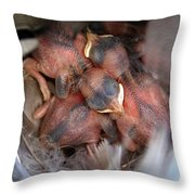 Little Bird Dreams Throw Pillow