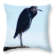 Little Blue Heron I Throw Pillow