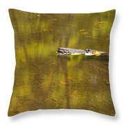 Little Carp River Bed 1 Throw Pillow