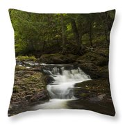 Little Carp River Falls 3 Throw Pillow