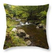 Little Carp River Falls 5 Throw Pillow