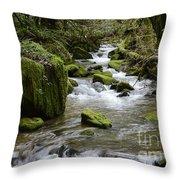 Little Creek 2 Throw Pillow
