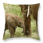 Little Ellie Throw Pillow