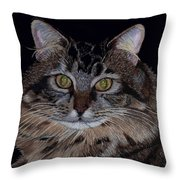 Little Girl - Maine Coon Cat Painting Throw Pillow