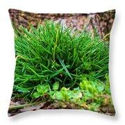 Little Grass Mound Throw Pillow