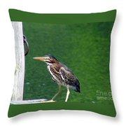 Little Green Heron Throw Pillow