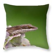 Little Komodo Throw Pillow