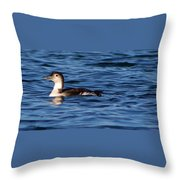 Little Loon Throw Pillow
