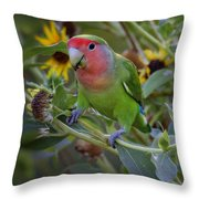 Little Lovebird Throw Pillow