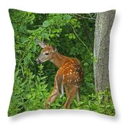 Little One Throw Pillow by Karol Livote