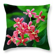 Little Pink Chinese Honeysuckle Flowers  Throw Pillow