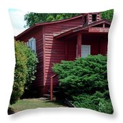 Little Red  Throw Pillow by Skip Willits