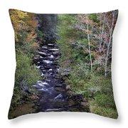 Little River - North Carolina Autumn Scene Throw Pillow