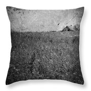 Little Songs And Skies  Throw Pillow