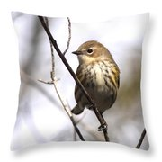 Little Speckled Bird Throw Pillow