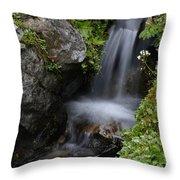 Little Splash Throw Pillow