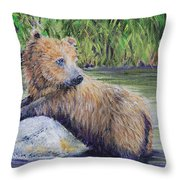 Little Toklat Study Throw Pillow
