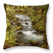 Little Zig Zag Stream Throw Pillow
