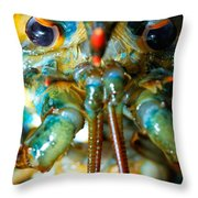 Live New England American Lobsters From Cape Cod Throw Pillow